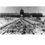Zum 70. Gedenktag 2015: Treffen der Nazi-Komplizen in Auschwitz - Gauck dabei!